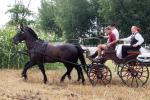 aratoverseny2012038