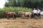 aratoverseny2012045