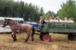 aratoverseny2012049