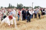 aratoverseny2012074