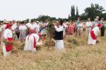 aratoverseny2012094