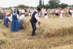 aratoverseny2012095