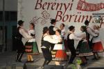 borunn2012006