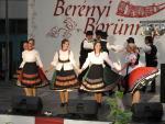 borunn2012008