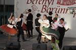 borunn2012009