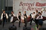 borunn2012011