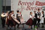 borunn2012015