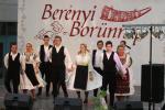 borunn2012016