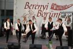 borunn2012019