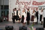 borunn2012020
