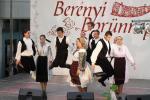 borunn2012021