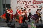 borunn2012023