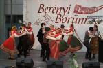 borunn2012024
