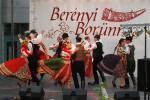 borunn2012025