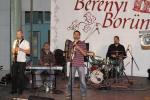 borunn2012026