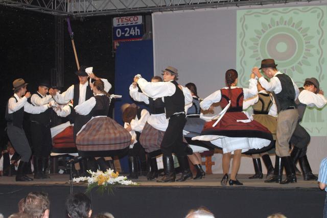 csangozaro2010038