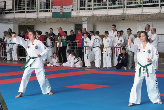 itftaekwon-do2016031