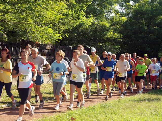 maraton2010042