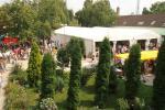 mezvasar2011090