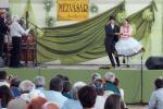 mezvasar2014154