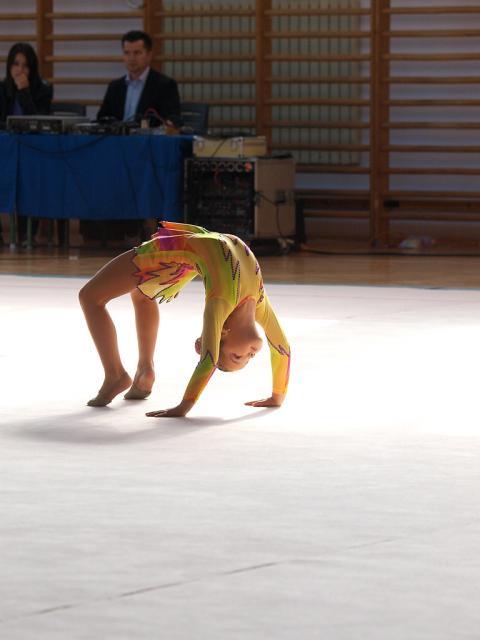 rsgk2011007