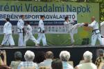 sportagv2013110