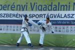sportagv2013111