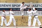 sportagv2014100