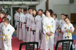 taekwon-do2014010