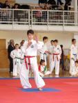 taekwon2010020