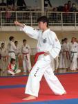 taekwon2010022