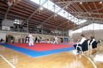 taekwon2010025