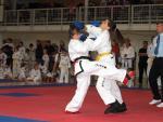 taekwon2010028