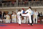 taekwon2010029