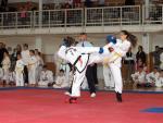 taekwon2010032