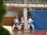 taekwondo2011009