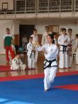 taekwondo2011012