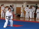 taekwondo2011015