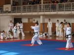 taekwondo2011017