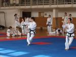 taekwondo2011018