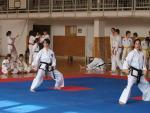 taekwondo2011019