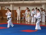 taekwondo2011021