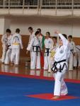 taekwondo2011024