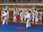 taekwondo2011025