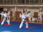 taekwondo2011026