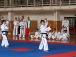 taekwondo2011028