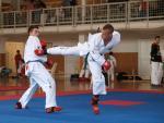 taekwondo2011032