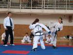 taekwondo2011039
