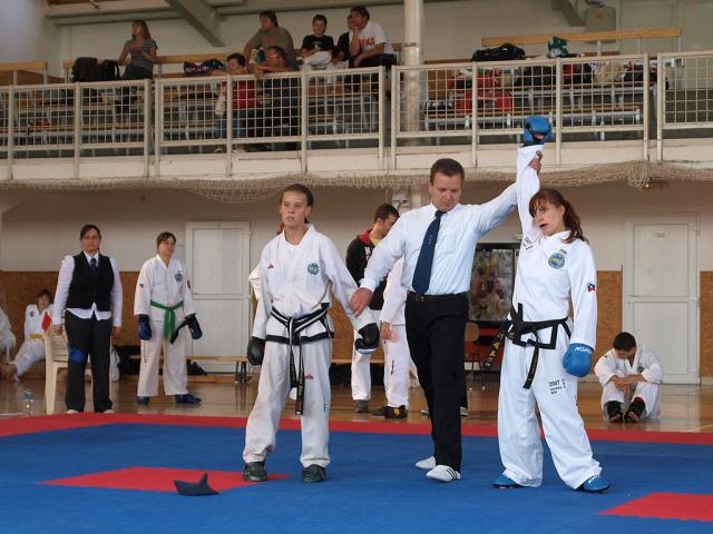 taekwondo2011040