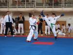 taekwondo2011041